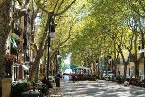 Winkelen-Mallorca
